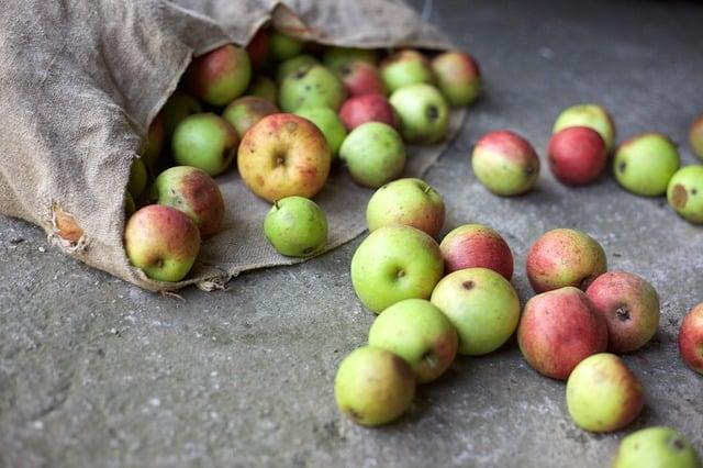 reduce food waste image2