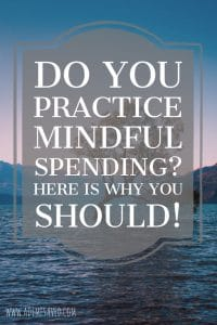 Mindful Spending Pin