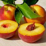peaches 2573836 640