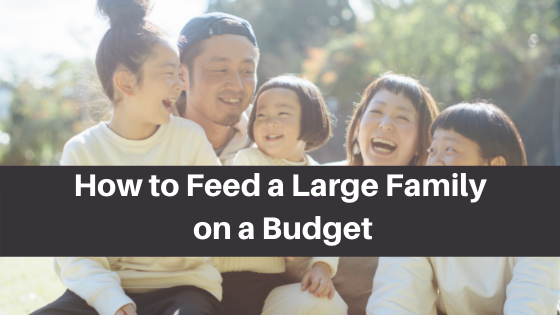 Howto Feed a Large Family on a Budget