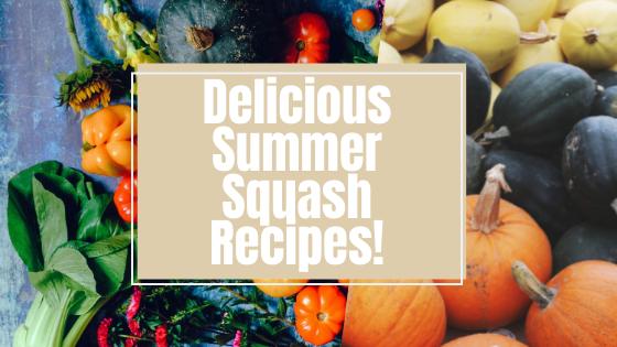 Delicious Summer Squash Recipes!