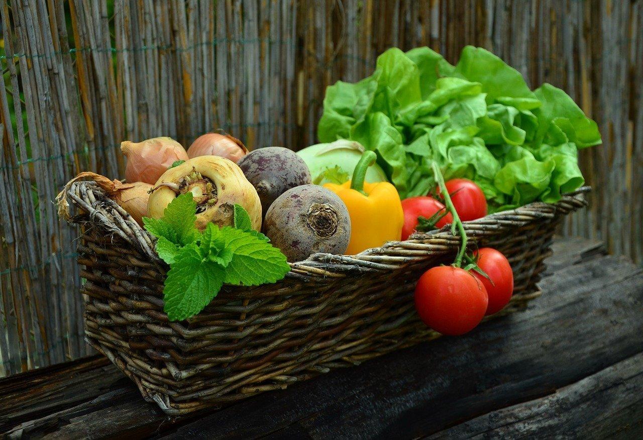 basket of vegetables: eat more vegetables